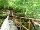 дървен мост от аквичоп